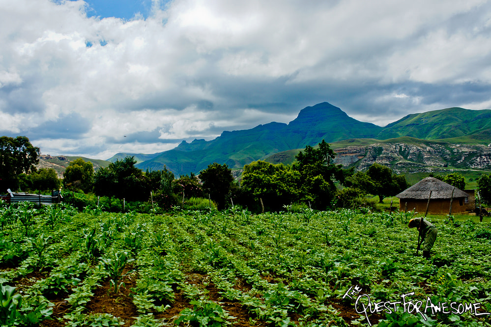 Lesotho Farmland